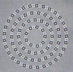 "Thoughts and ""Reality"" - circle square optical illusion"